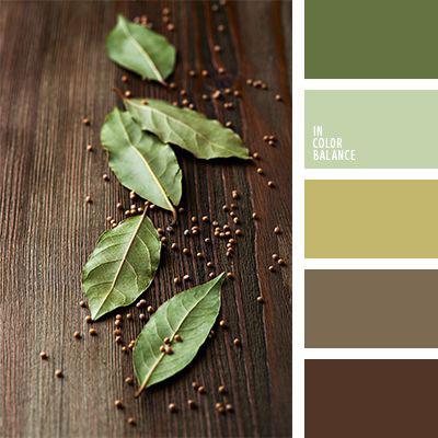 boje za zidove uz braon nameštaj - braon i zelena
