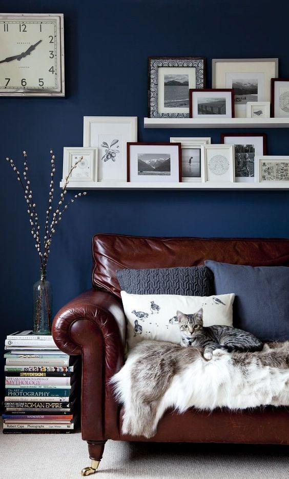 boje za zidove uz braon nameštaj - braon i plava