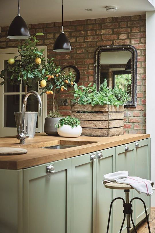 zelene boje za kuhinju - zeleni zidovi