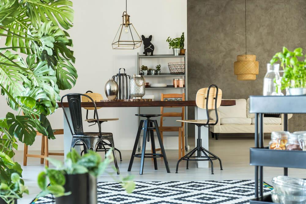 zelene biljke kao kuhinjska dekorcija
