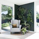 Biljke u vašem domu